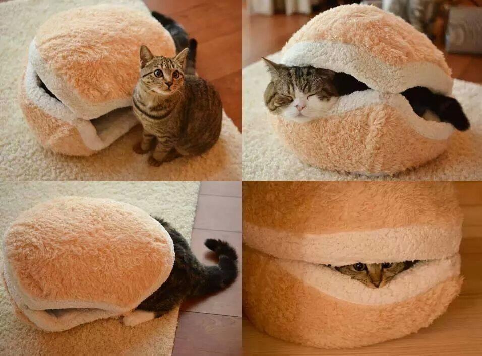 Домик для кошки прикольный