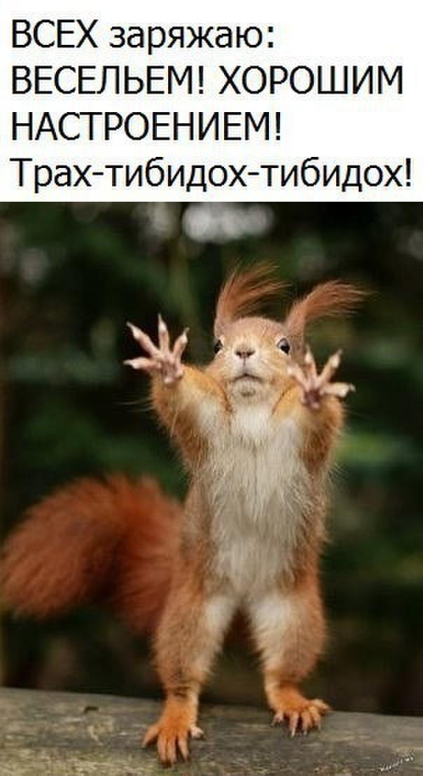 http://f4.mylove.ru/CFvtMW1eFj.jpg