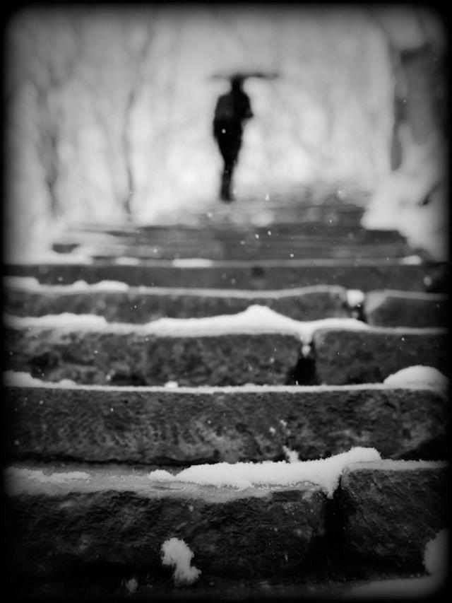 стихотворение бальмонта я мечтою ловил уходящие тени