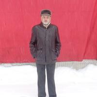 сергей, 70 лет, Близнецы, Москва