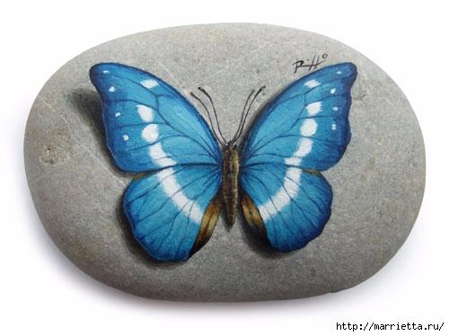 Бабочка на камне рисунок