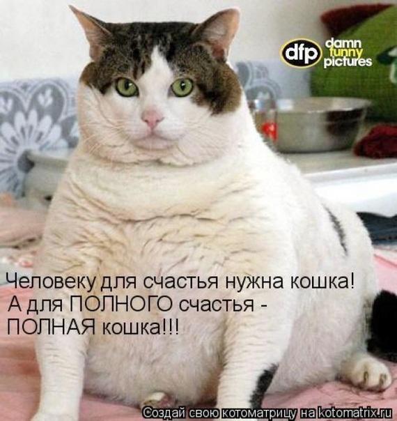 http://f4.mylove.ru/V_2hQqk5r4v9SGSGw.jpg