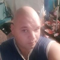 Артем, 27 лет, Лев, Красногвардейское