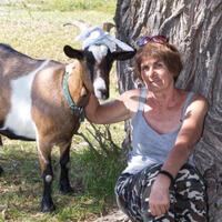 Ольга, 59 лет, Стрелец, Ахтубинск