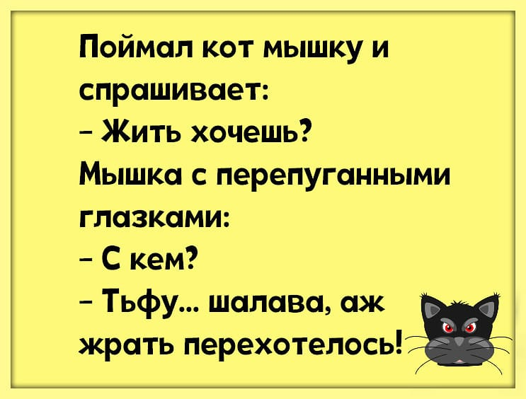 Анекдот Про Мышку