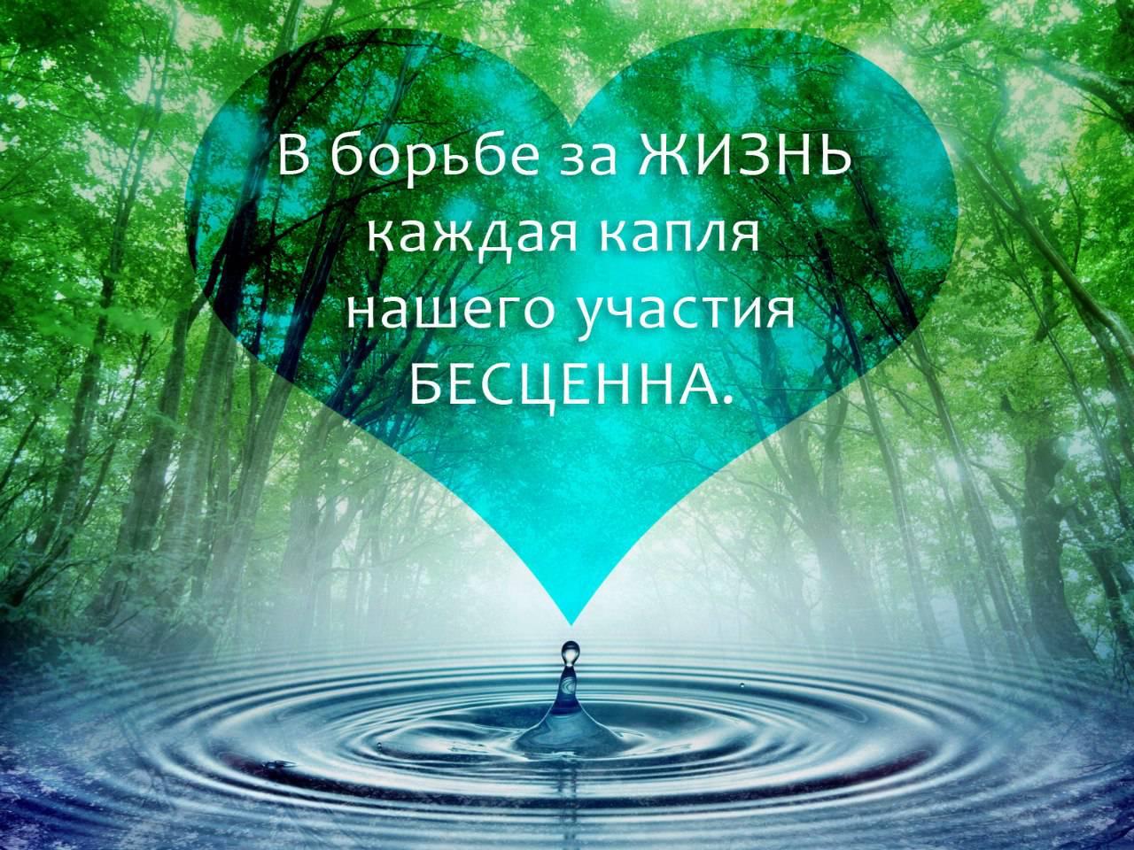 Открытка «Наша жизнь, наша музыка» 61