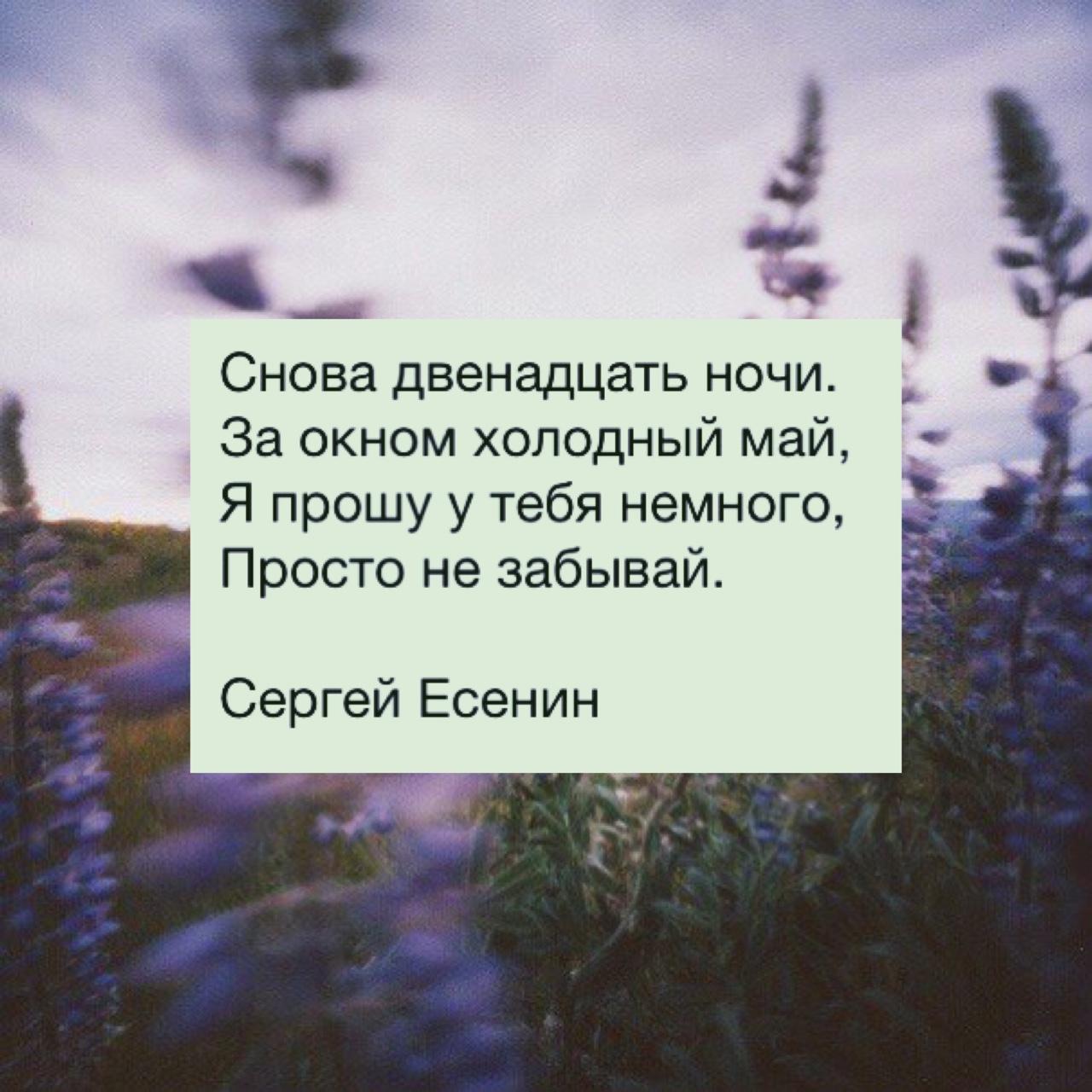 Цитаты о любви сергея есенина