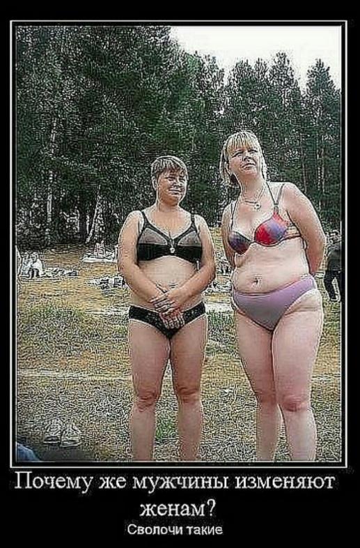 Толстушки в купальниках секс фото вк 11841 фотография