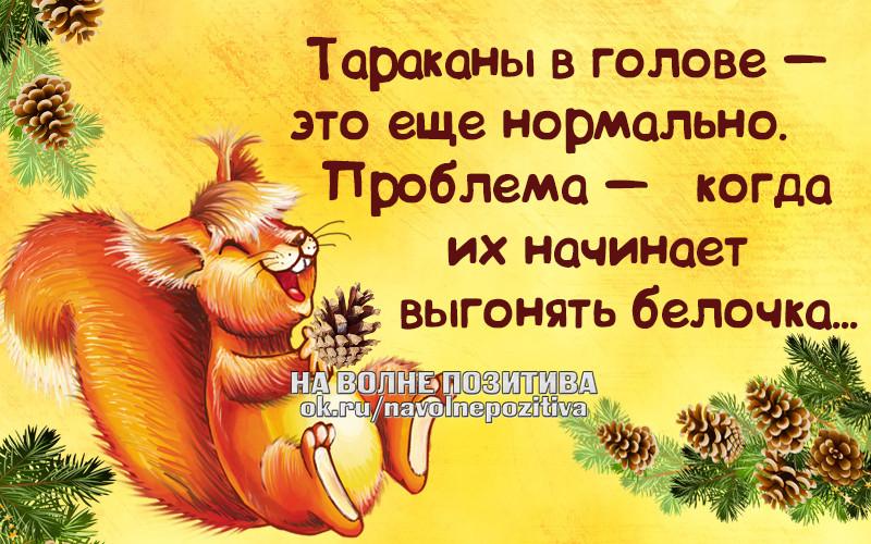 http://f4.mylove.ru/oTu42V1GS3.jpg