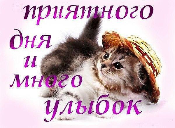 Приятное пожелание приятного дня