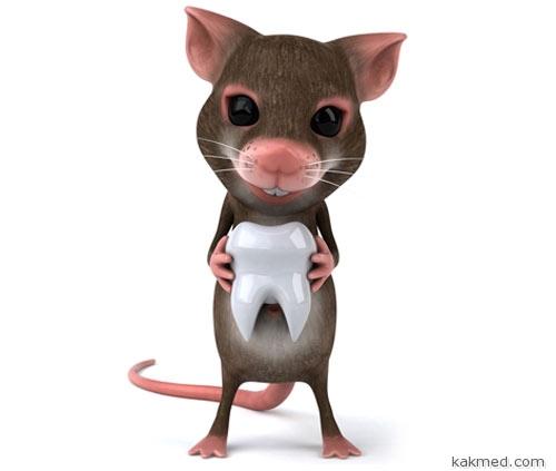 Когда мышка забирает зуб