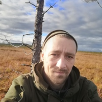 Владимир, 36 лет, Лев, Приозерск