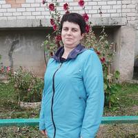 Наталья Шапкина, 43 года, Рыбы, Вологда