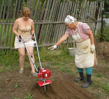 Электрофореза для обработки почвы своими руками 45