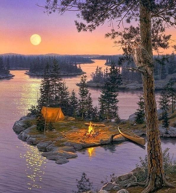 Сердечко надписью, добрый вечер природа открытки