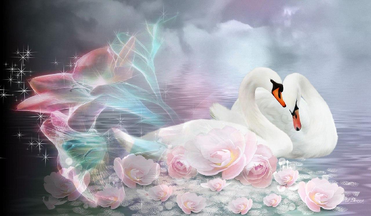 Я тебя люблю лебеди открытки, приколами смс