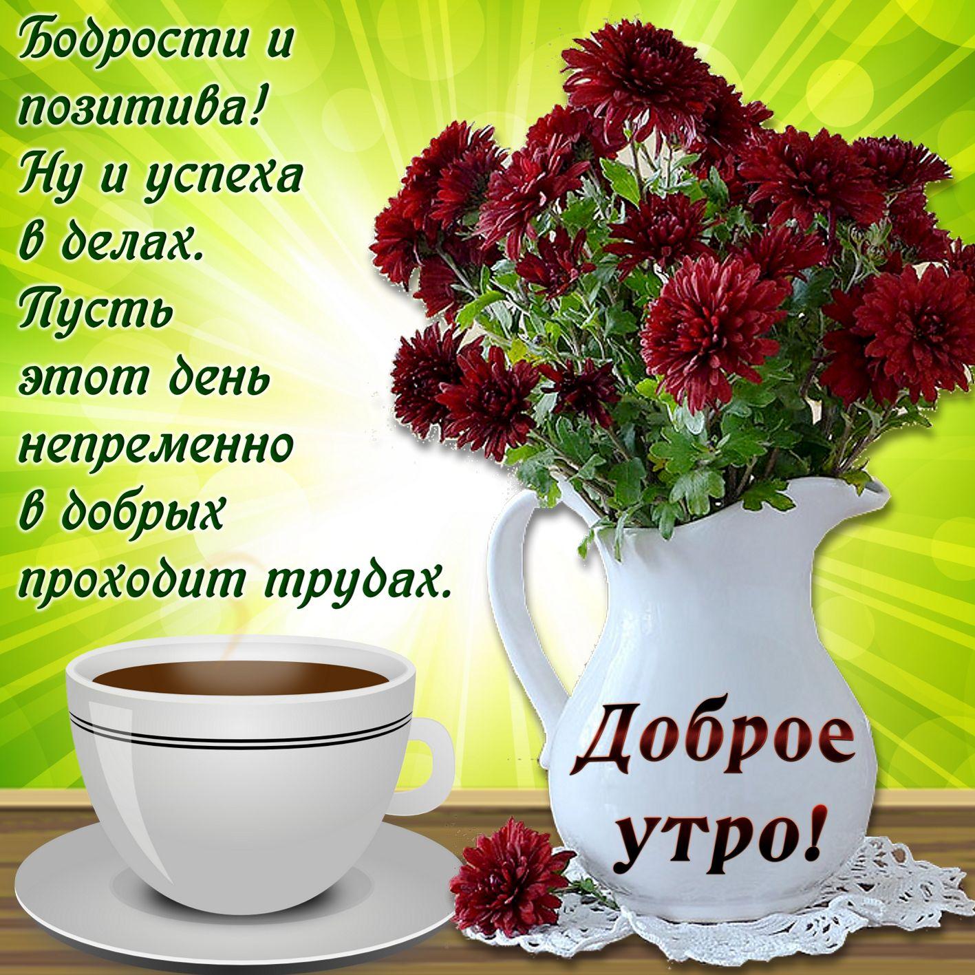 Картинка с добрым утром добром и хорошего дня пожеланиями