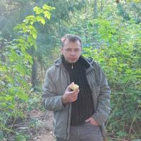 Андрей, 47 лет, Дева, Всеволожск