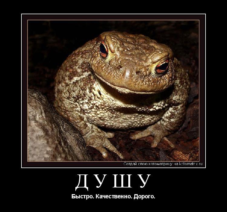 живем прекрасном картинки жаба давит мыльных этикетках