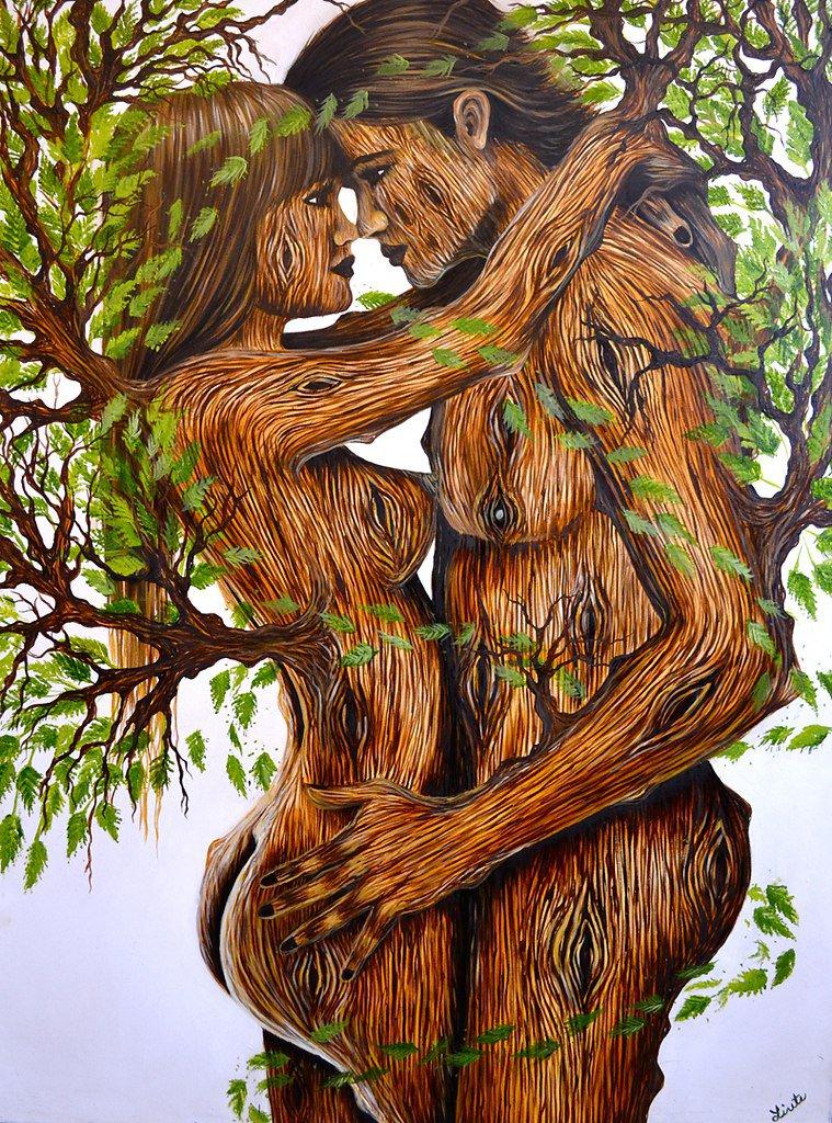 Картинки бонсай микс дерево только