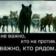 фаиг 37 Москва