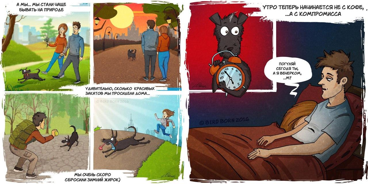 Прикольные комиксы в картинках с собаками, наездница