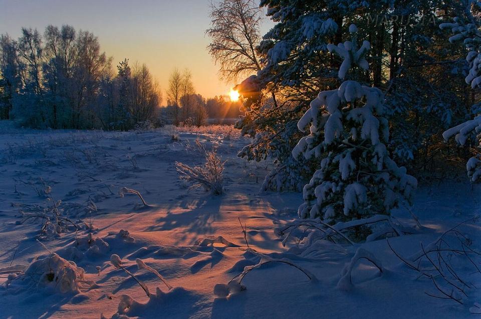 пастельных картинки красота русской зимы этом