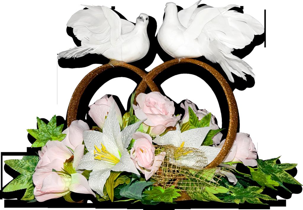 Свадебные картинки с голубями и кольцами
