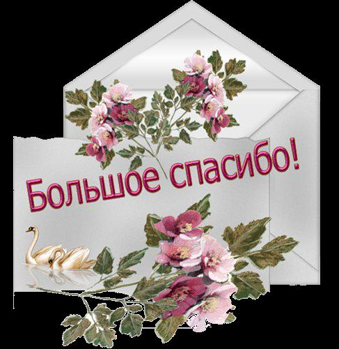 Открытка со словами спасибо за подарки, открытки