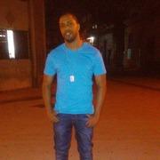 Allan 33 Habana Libre