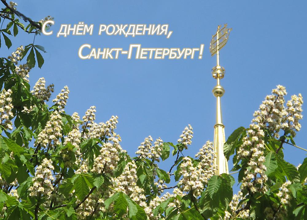 с днем рождения петербург картинки сухого воздуха
