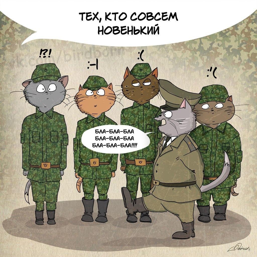 поздравление на день рождения другу в армии отличником будущий президент