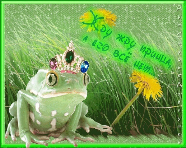 Наступающим, картинки про лягушек с надписями