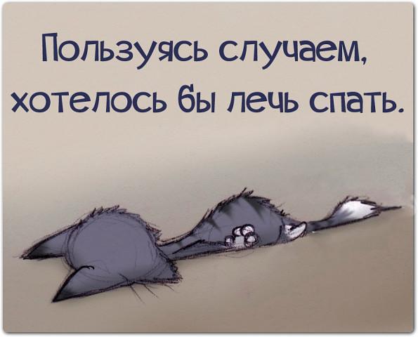 Своими руками, смешные картинки хочу спать