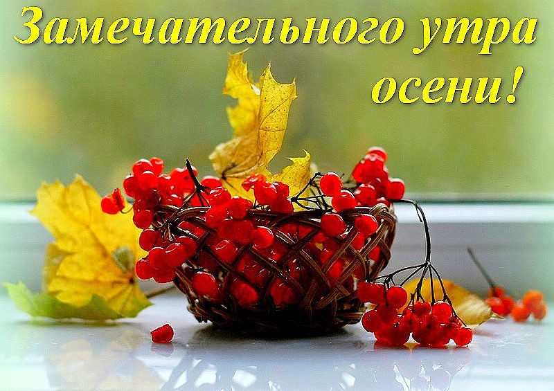 Картинки, открытка с добрым утром осень