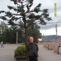 паша, 39 лет, Козерог, Красноярск