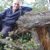 анатолий, 70 лет, Дева, Мурманск